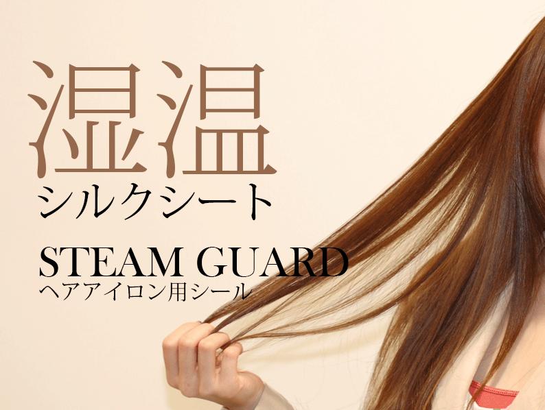 Steam Guard スチームガード